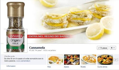 Cannamela-Spezie1 Vendere Online: Guida per usare Facebook bene [Oltre le statistiche]