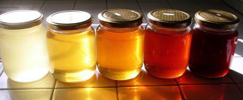 Miele d'Api: Metodo per Scoprire la Qualità dell'Aria