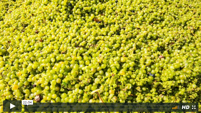 Marketing del territorio per Aceto Balsamico di Modena