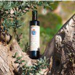 olio tnisino contro - olio extravergine d'oliva italiano, esempio olio Zito