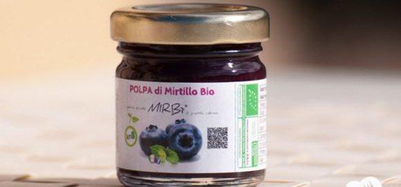 Marketing alimentare - mirtillo biologico e aziende alimentari