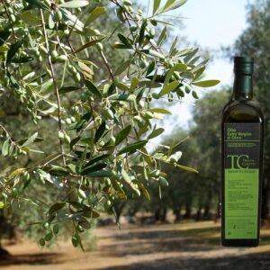 Olio Extravergine d'oliva Pugliese  De Filippis