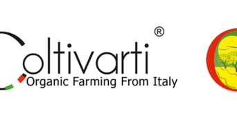 Olio extravergine d'Oliva Biologico Pugliese: Coltivarti Azienda Agricola Biologica Tricarico