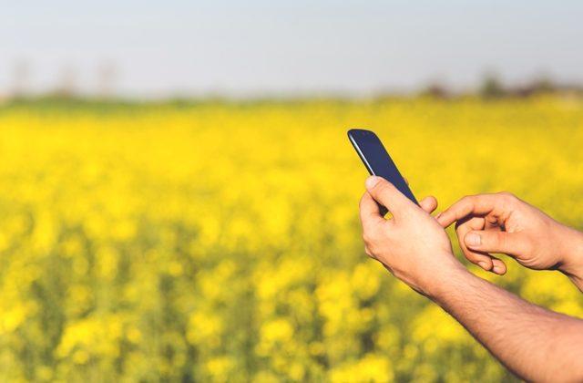Agrifood e Digital Transformation nel settore Agroalimentare
